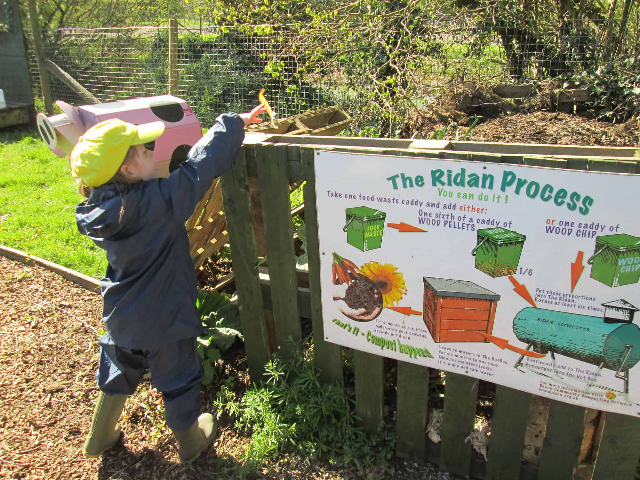 A child puts something in a composting bin
