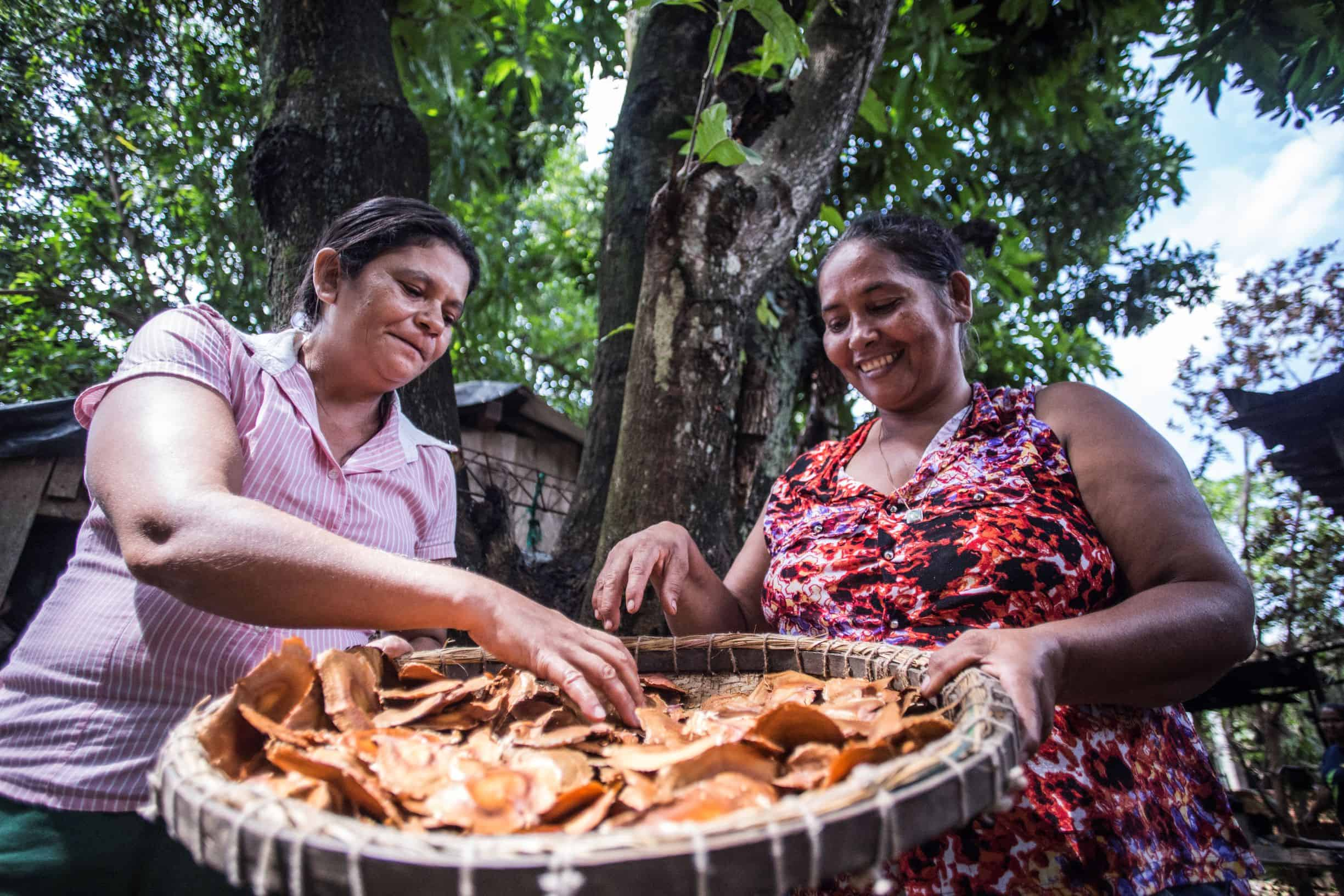 Two woman sorting through leaves