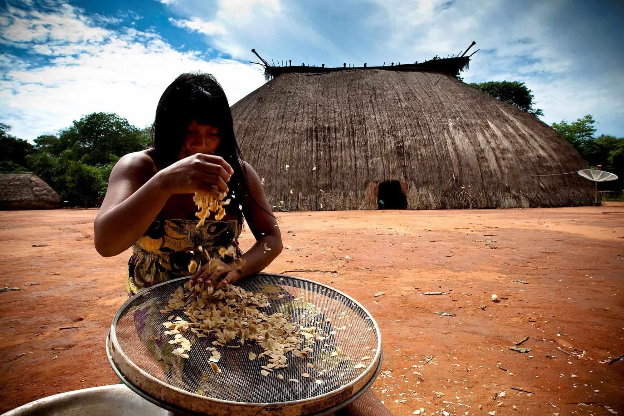 Rede-de-Sementes-do-Xingu-seed-collection-project-credit-Ayrton-Vignola_47f2a5c6ce58a7f1225e360da5263fae
